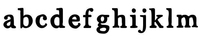 MixSerif Font LOWERCASE
