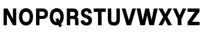 MixolydianTitlingRg-Bold Font LOWERCASE