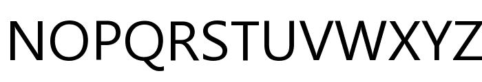 Microsoft New Tai Lue Font UPPERCASE