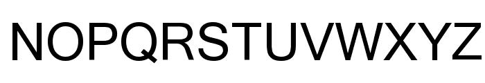 Microsoft Sans Serif Font UPPERCASE