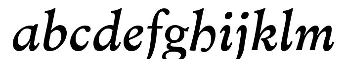 MinisterStd-BookItalic Font LOWERCASE