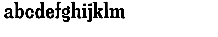 Minernil Bold Condensed Font LOWERCASE