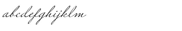 Miss Robertson Regular Font LOWERCASE