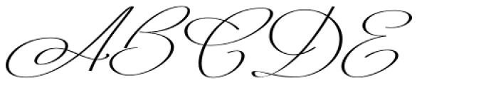 Mina Calligraphic Bold Font UPPERCASE