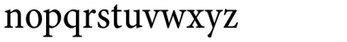 Minion Pro Caption Cond Regular Font LOWERCASE
