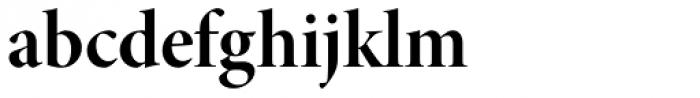 Minion Pro Display Bold Font LOWERCASE