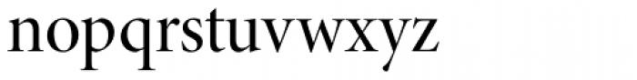 Minion Pro Display Medium Font LOWERCASE