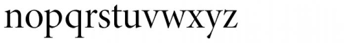 Minion Pro Display Regular Font LOWERCASE