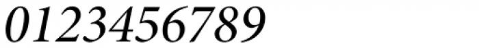 Minion Pro SubHead Medium Italic Font OTHER CHARS