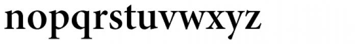 Minion Pro SubHead SemiBold Font LOWERCASE