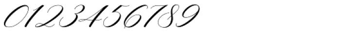 Mishora Script Regular Font OTHER CHARS