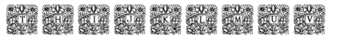 Mixed Capital Style Font UPPERCASE