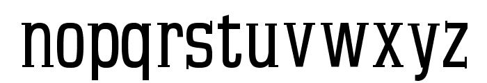 MKSerifTallXMedium Font LOWERCASE
