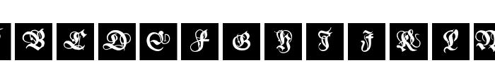 MKanzleiCaps-One Font UPPERCASE