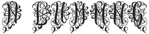 Monogram Script Heart otf (400) Font OTHER CHARS