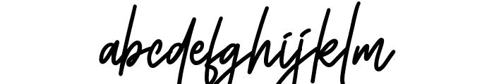 Monoline Signature Font LOWERCASE