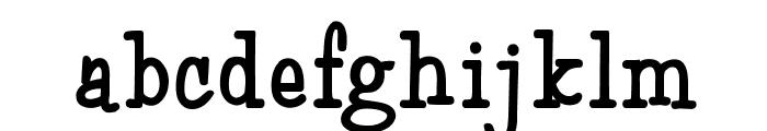 MonroeOpti-Bold Font LOWERCASE
