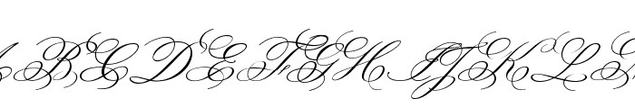 MonsieurLaDoulaise-Regular Font UPPERCASE