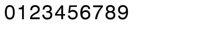 Monospace 821 WGL Roman Font OTHER CHARS