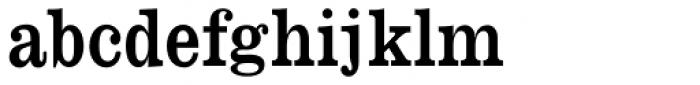 Monotype Clarendon Std Regular Font LOWERCASE