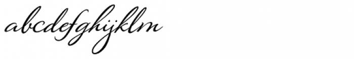 Montague Script Bold Font LOWERCASE