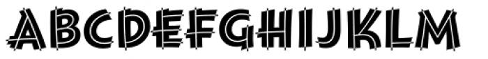 Montara Bold Initials Font LOWERCASE