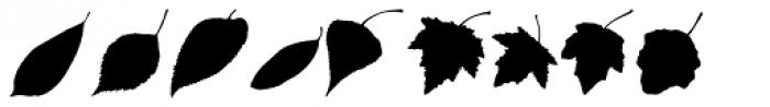 MoreLeaves DL Font OTHER CHARS
