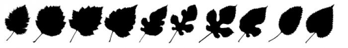 MoreLeaves UR Font LOWERCASE