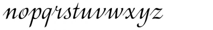 Motiv Font LOWERCASE
