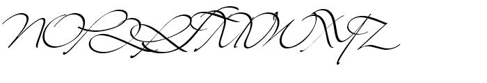 Mr Lackboughs Regular Font UPPERCASE