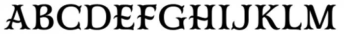 Mr Darcy Medium Font LOWERCASE