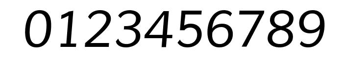 Muli Italic Font OTHER CHARS