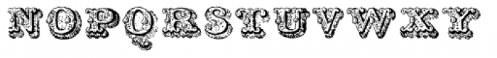 Musirte Antiqua Zweite Sorte Font LOWERCASE