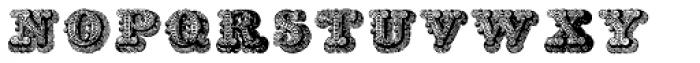 Musirte Antiqua Font LOWERCASE