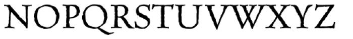 MVB Celestia Antiqua Italic Font UPPERCASE