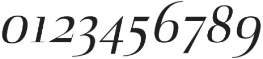 Naia regular-italic otf (400) Font OTHER CHARS