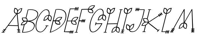 NATURE green Italic Font UPPERCASE