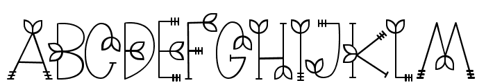 NATURE green Font UPPERCASE