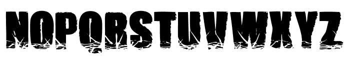 Names Brutas Font UPPERCASE