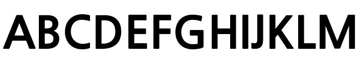 NanumGothicExtraBold Font UPPERCASE