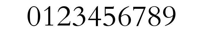 Naskh Type I Font OTHER CHARS