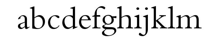 Naskh Type I Font LOWERCASE