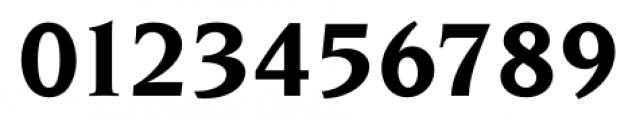 Navarro Bold Italic Font OTHER CHARS