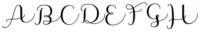 Namaste Script Essential Bold Font UPPERCASE