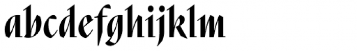 Nara Std Bold Cursive Font LOWERCASE