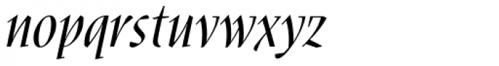 Nara Std Italic Font LOWERCASE