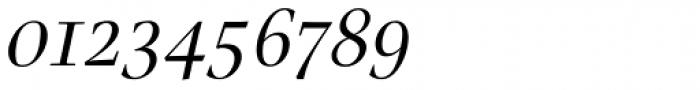 Nara Std Light Italic Font OTHER CHARS