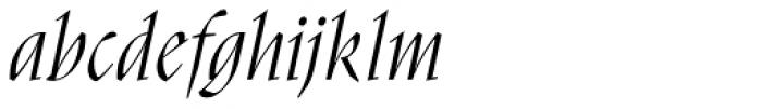 Nara Std Light Italic Font LOWERCASE