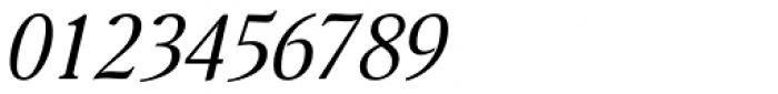 Nat Flight Italic Font OTHER CHARS