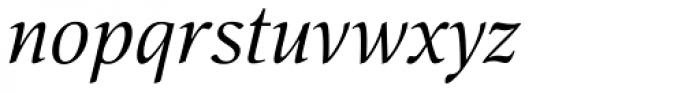 Nat Flight Italic Font LOWERCASE